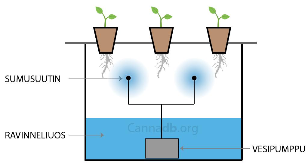 aeroponic-hydro