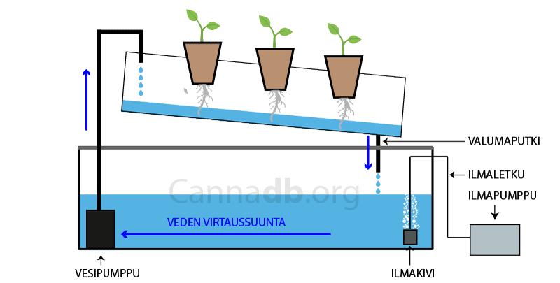 hydroponics-nft-nutrient-film-technique
